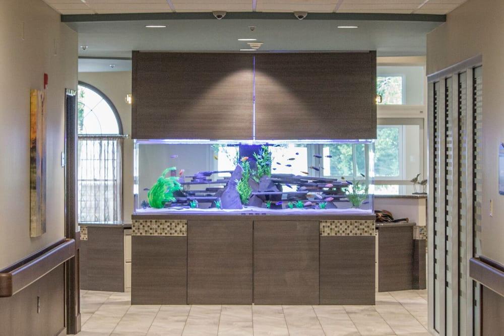 Aquarium at Creekside Health and Rehabilitation Center