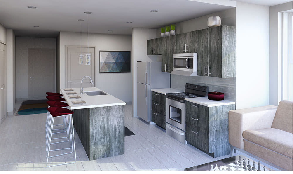Open kitchen in apartment for rent in Rochester NY