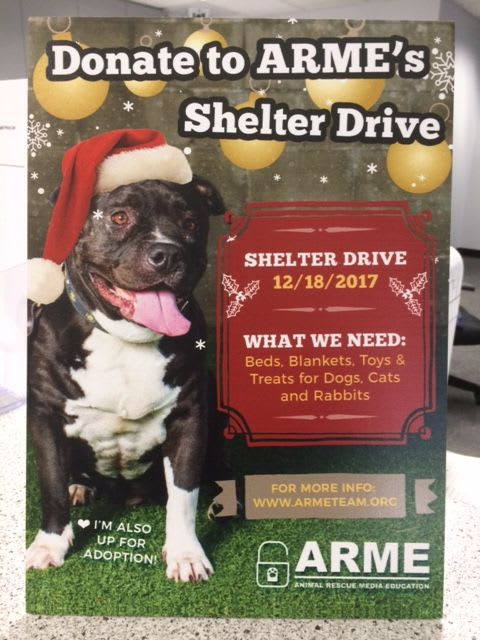 Los Angeles Self Storage ARME Animal Rescue Holiday Gift Drive