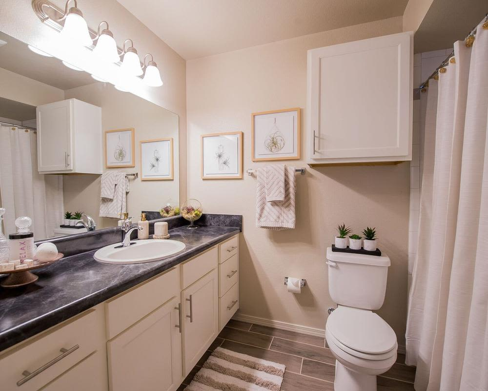 Bathroom at Watercress Apartments in Maize