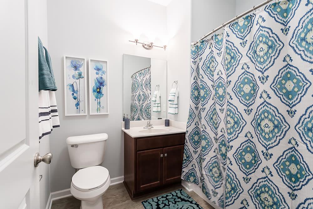 Bathroom at Villa Capri Senior Apartments in Rochester, New York