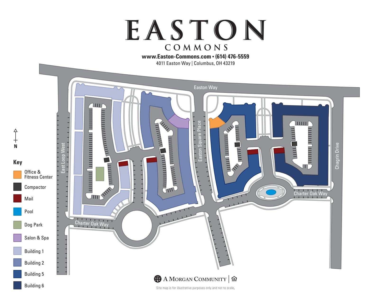 Apartments with a Swimming Pool | Amenities at Easton Commons