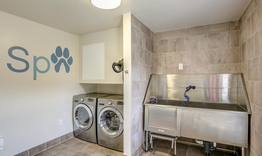 Modern pet Spa in Westminster, CO