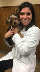 dr.heyer Craft at Des Moines Animal Hospital