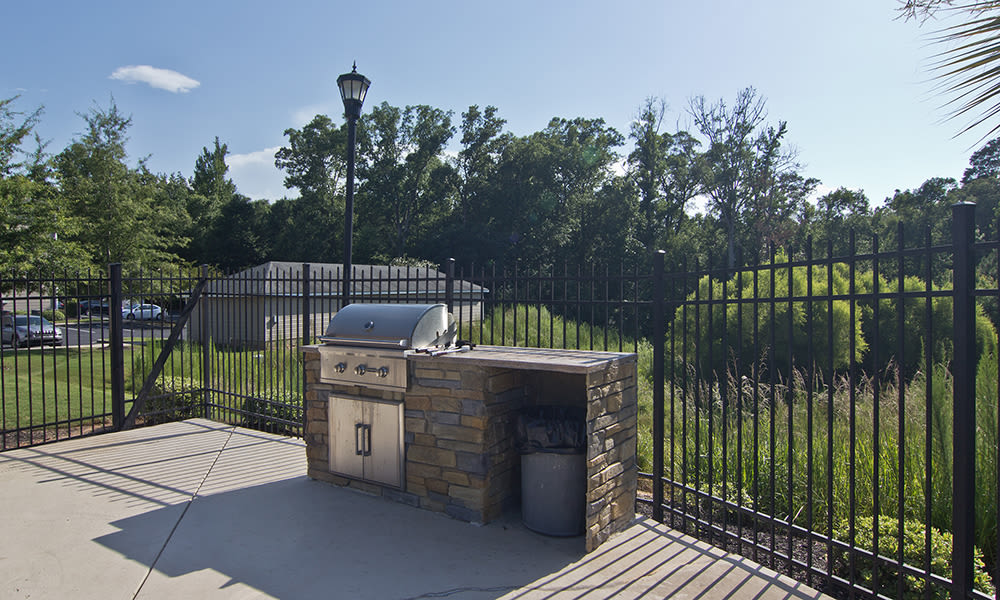 Bbq area at The Overlook At Golden Hills in Lexington, South Carolina