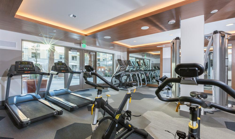 Fitness center atAster