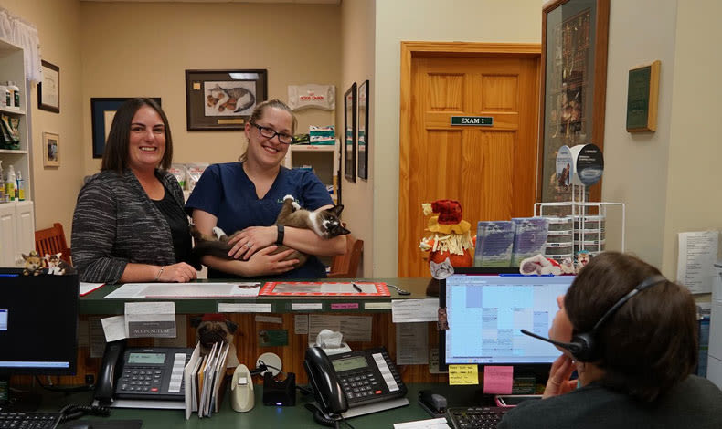 Staff at Marbletown Animal Hospital in Stone Ridge, NY