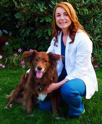 Dr. Shannon Wilfong at Morgantown Animal Hospital