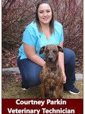 Courtney, Veterinary Technician at Pocatello Animal Hospital