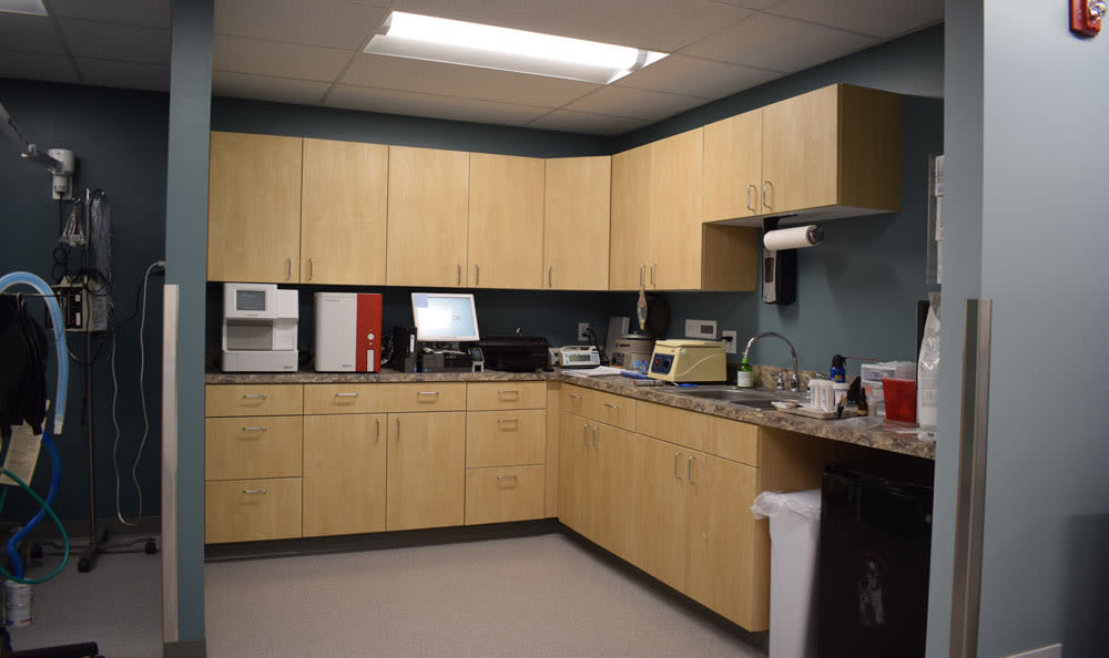 Lab Area At Larkin Veterinary Center In West Lawn