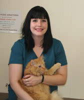 Krista, Vet Technician at Oro Valley Animal Hospital
