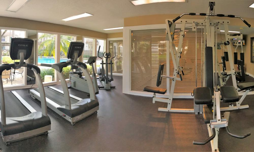 Fitness center at Countrywood Apartments in Tampa, FL