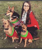 Katie, Kennel Manager at Minooka Animal Hospital