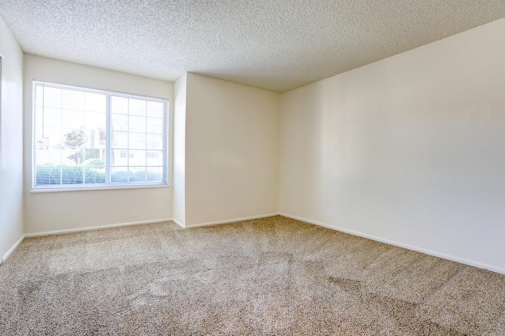 Spacious and sunny bedroom at Deerfield Apartments in Denver, CO