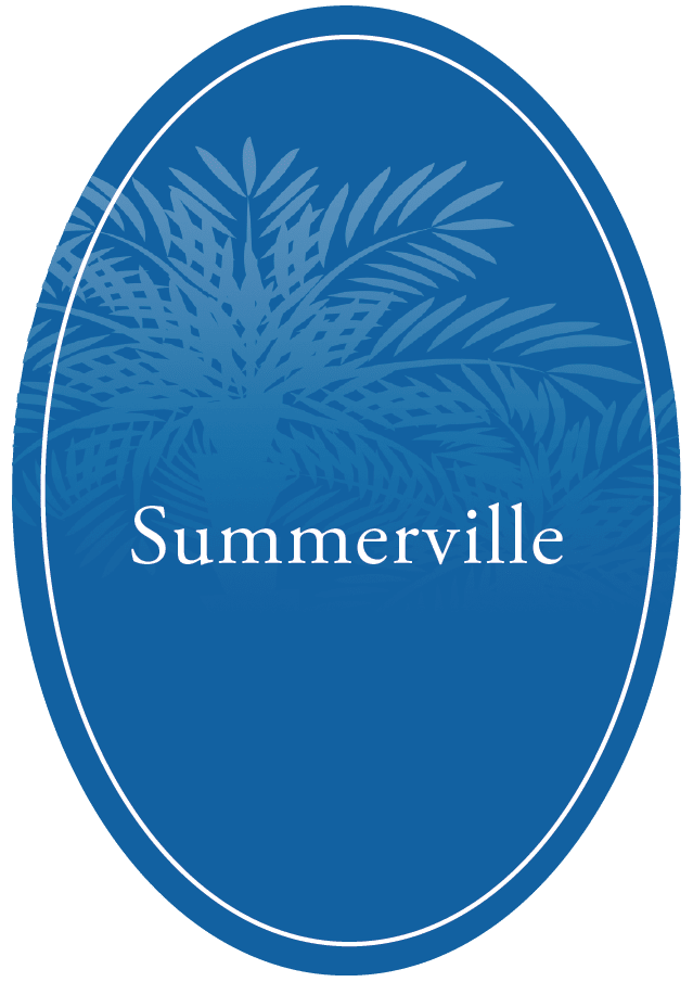The Village at Summerville