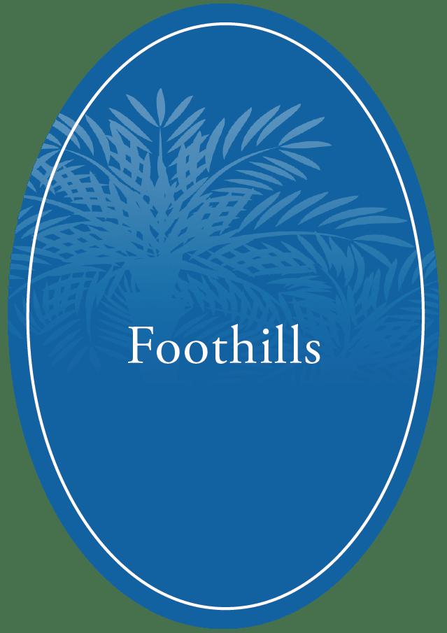 Foothills Presbyterian Community