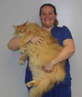 Aislynn Registered Veterinary Technician at Fort Wayne Animal Hospital