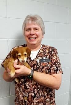 Kim at Lenoir Animal Clinic