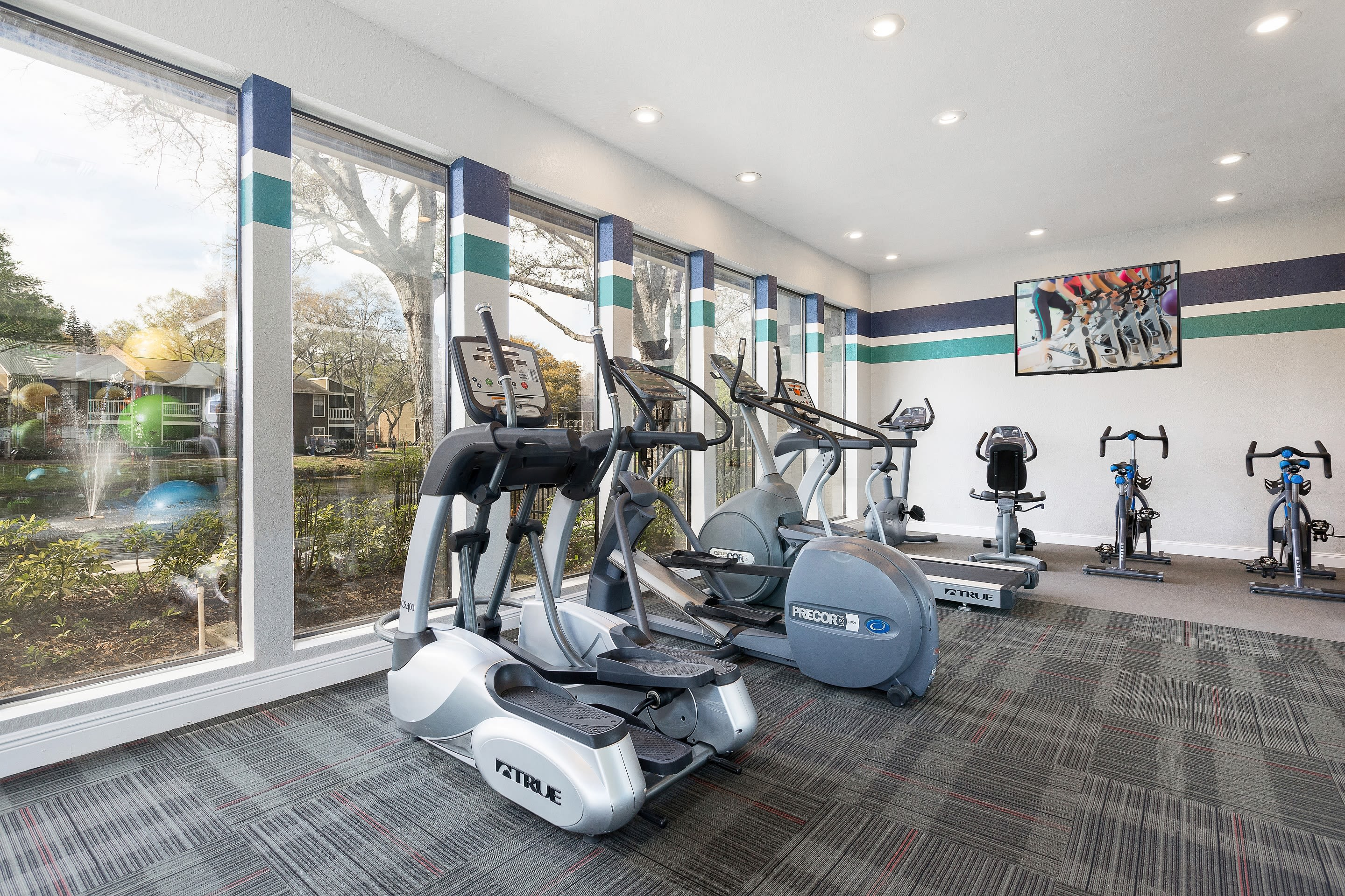 Fitness center at Avion at Carrollwood in Tampa, Florida