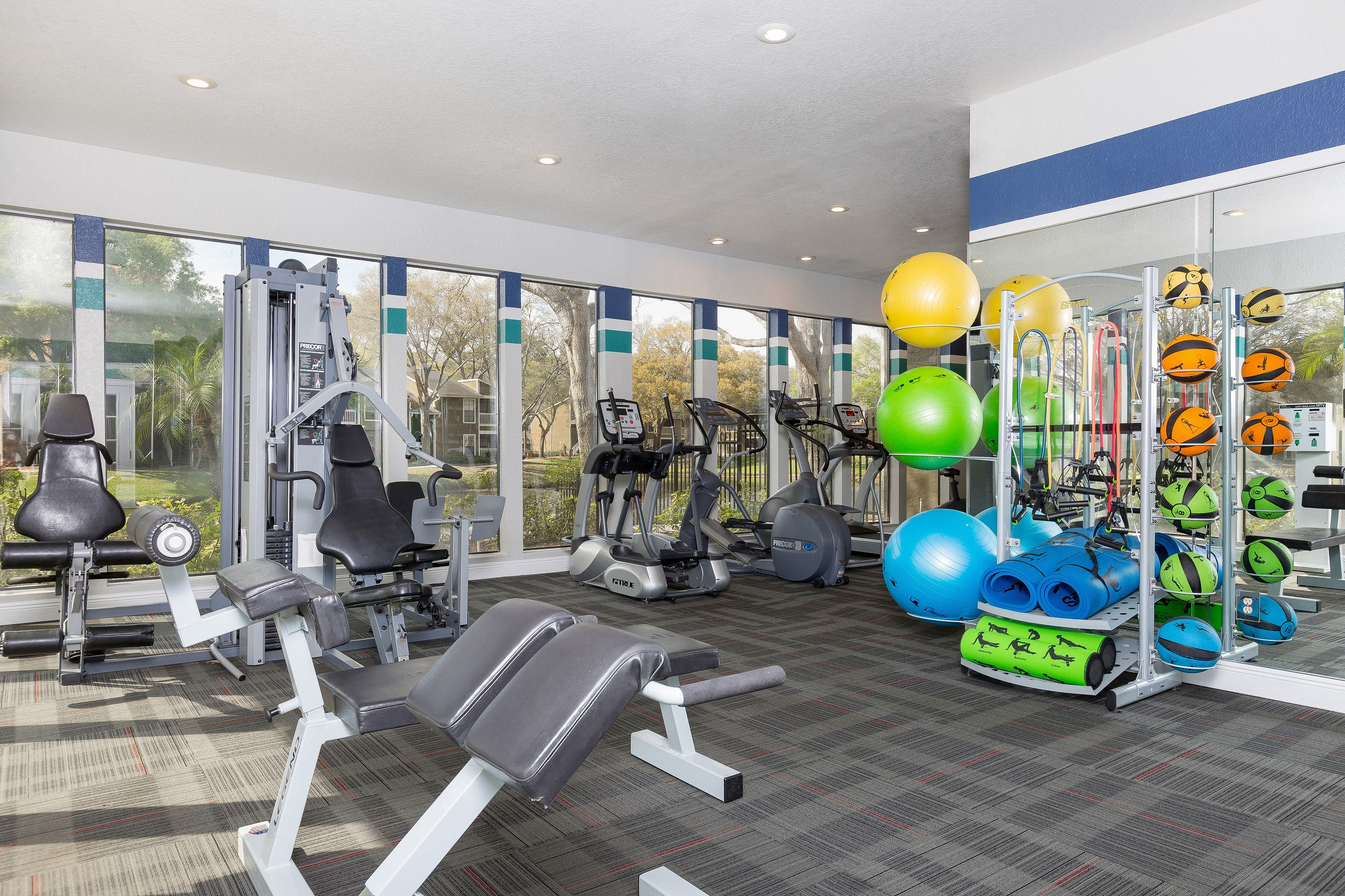Natrually well-lit fitness center at apartments in Avion at Carrollwood in Tampa, Florida