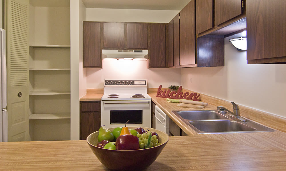 Modern kitchen at apartments in Richton Park, Illinois