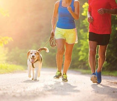 Couple jogging with dog outside of Solon Club Apartments in Oakwood Village, Ohio