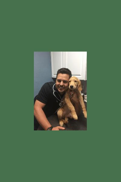Dr. Carter at Prestige Animal Clinic