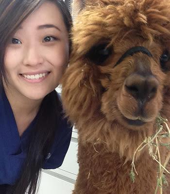 Eunice, VA at Value Pet Clinic - Tacoma