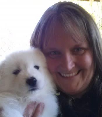 Trisa, LVT at Value Pet Clinic - Tacoma
