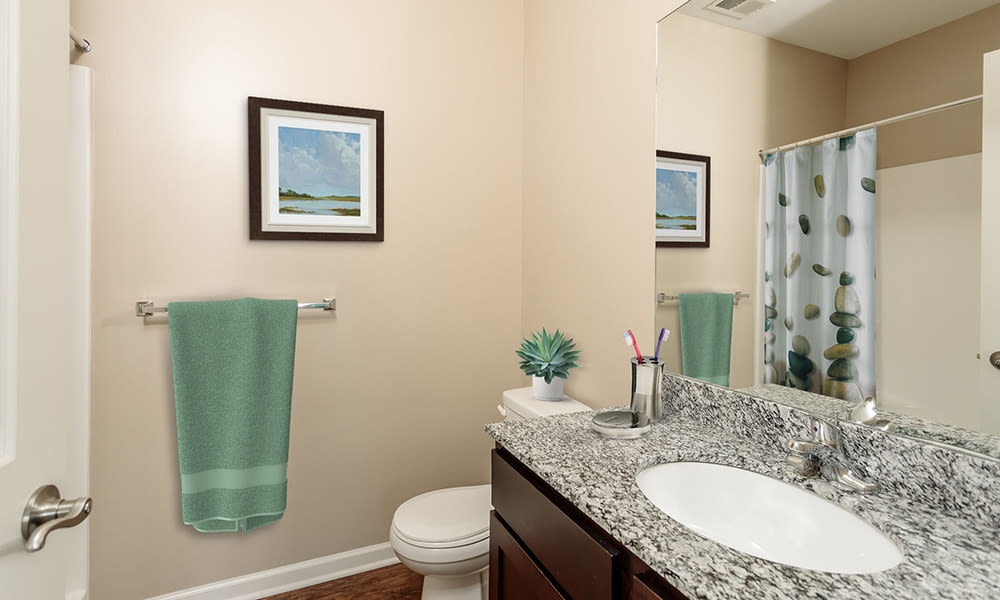 Bathroom at Canal Crossing home in Camillus, New York