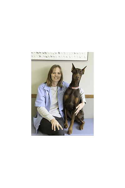 Dr. Kay at Clive Animal Hospital