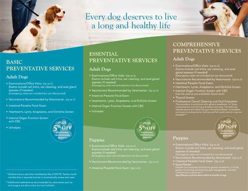 Dog Wellness Plans at Stafford Veterinary Hospital