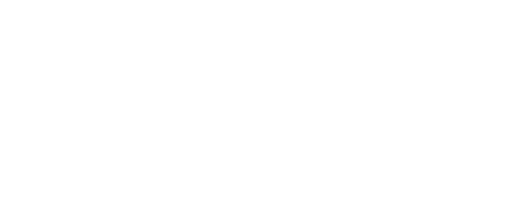 Atlantic Pacific Companies
