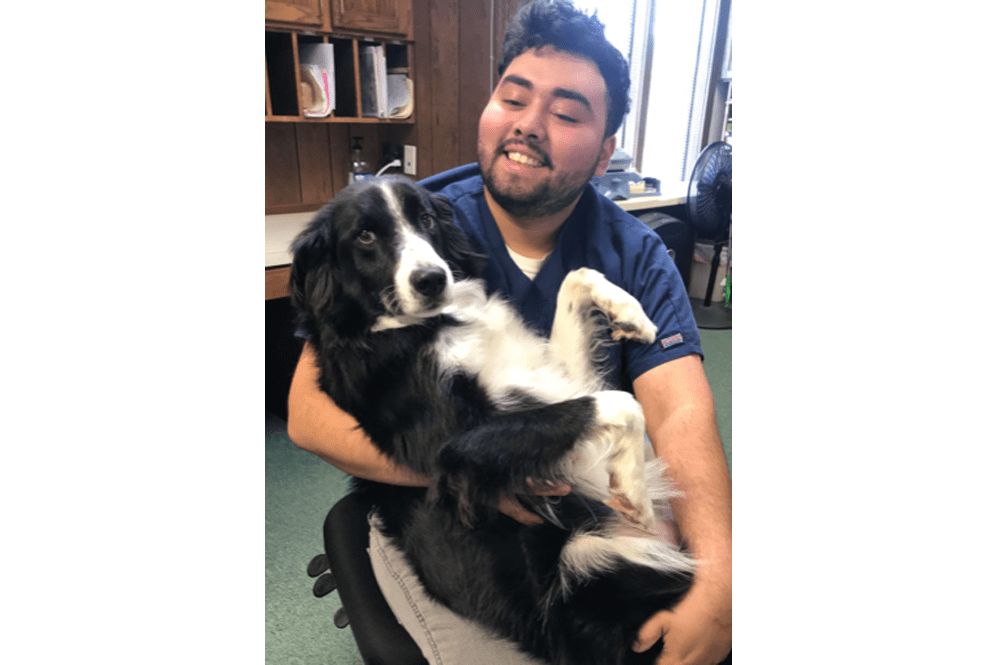 Employee and dog in office at Oldtown Veterinary Hospital in Winston Salem