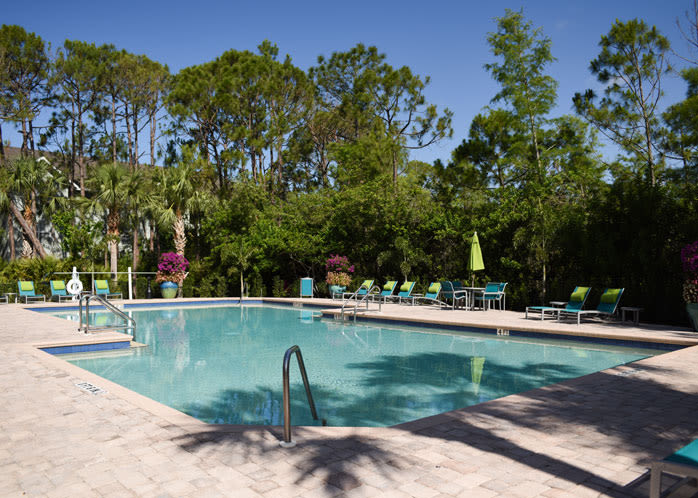 Swimming Pool at lMeadow Brook Preservein Naples