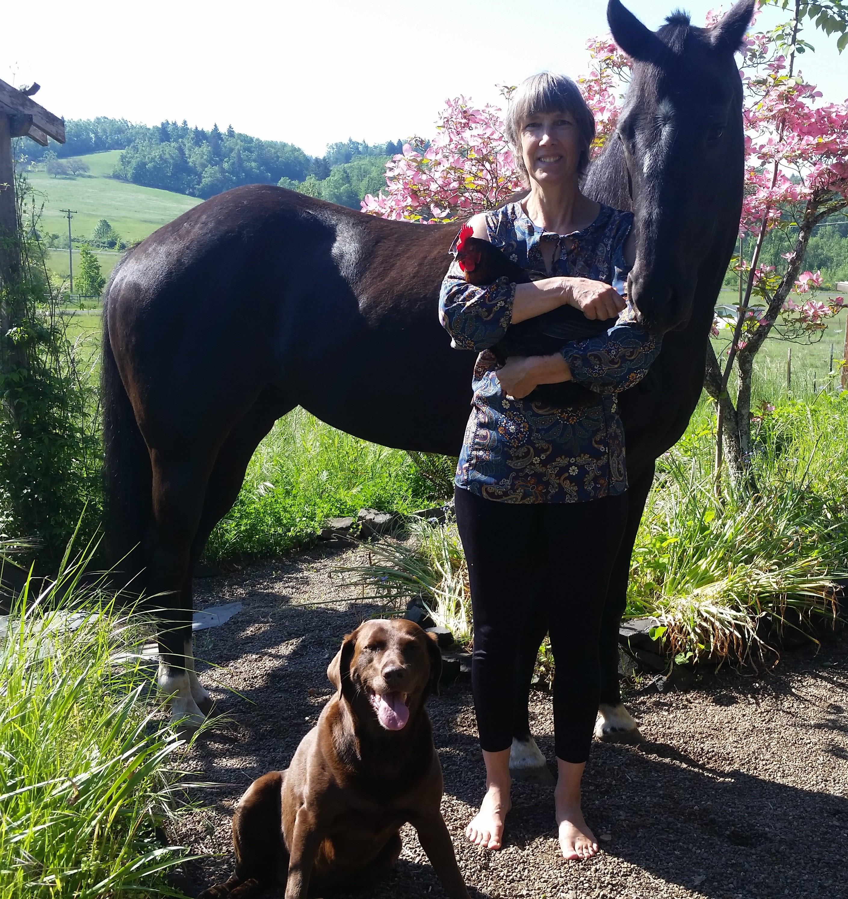 Vanessa at The Ark Veterinary Clinic