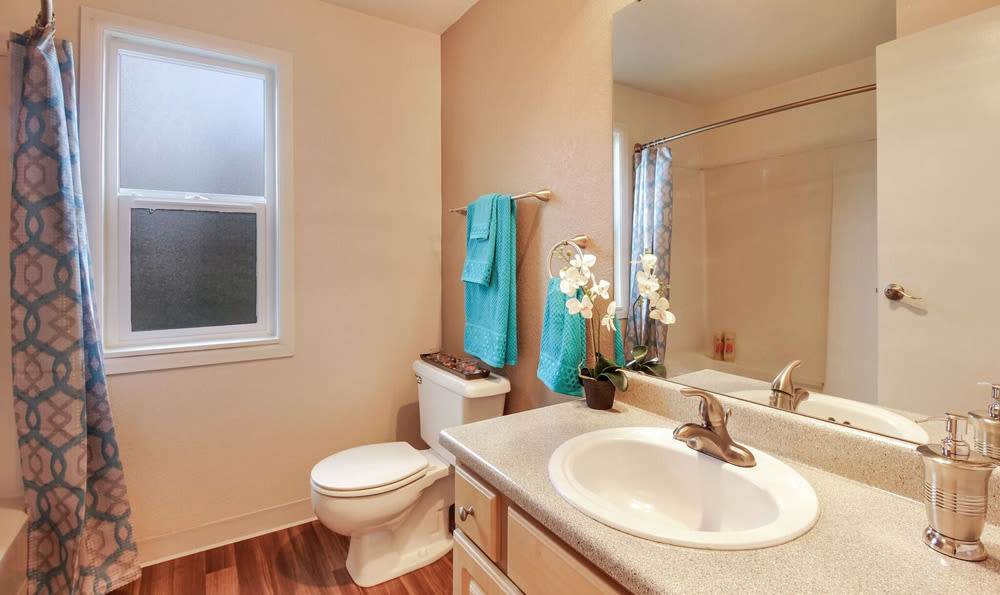 Bathroom in apartment at Mountlake Terrace, Washington