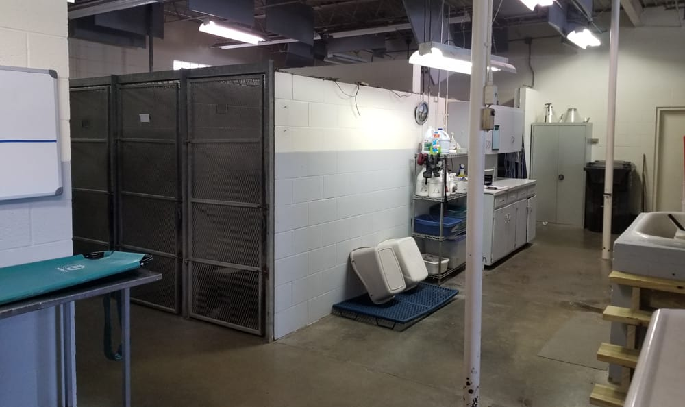 Boarding kennel at Family Pet Hospital