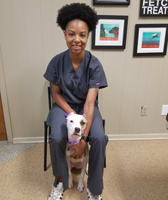 Paris at Baton Rouge Animal Clinic