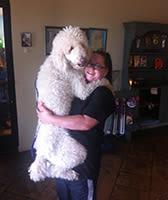 Ashlyn at University Pet Resort in Merced, California