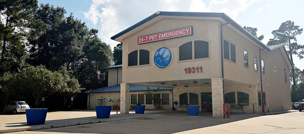 Emergencies at Champions Forest Animal Clinic in Houston, Texas