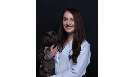 Dr. Wedde, DVM at Lakewood Animal Hospital