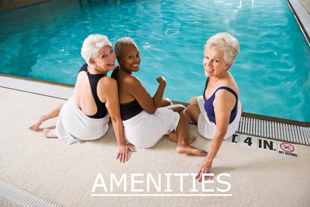 View the amenities at Parc Alpharetta in Alpharetta, GA