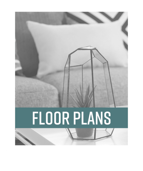 Visit our Floor Plans page to see your options at Blackbird in Redmond, Washington