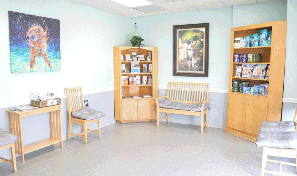 Dog waiting room at Hidden Valley Animal Hospital & Boarding