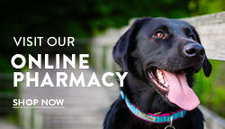 Online pharmacy at Paw Prints Veterinary Clinic