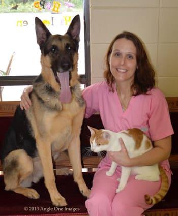 Dr. Jennifer Griffin at Lake Street Animal Hospital