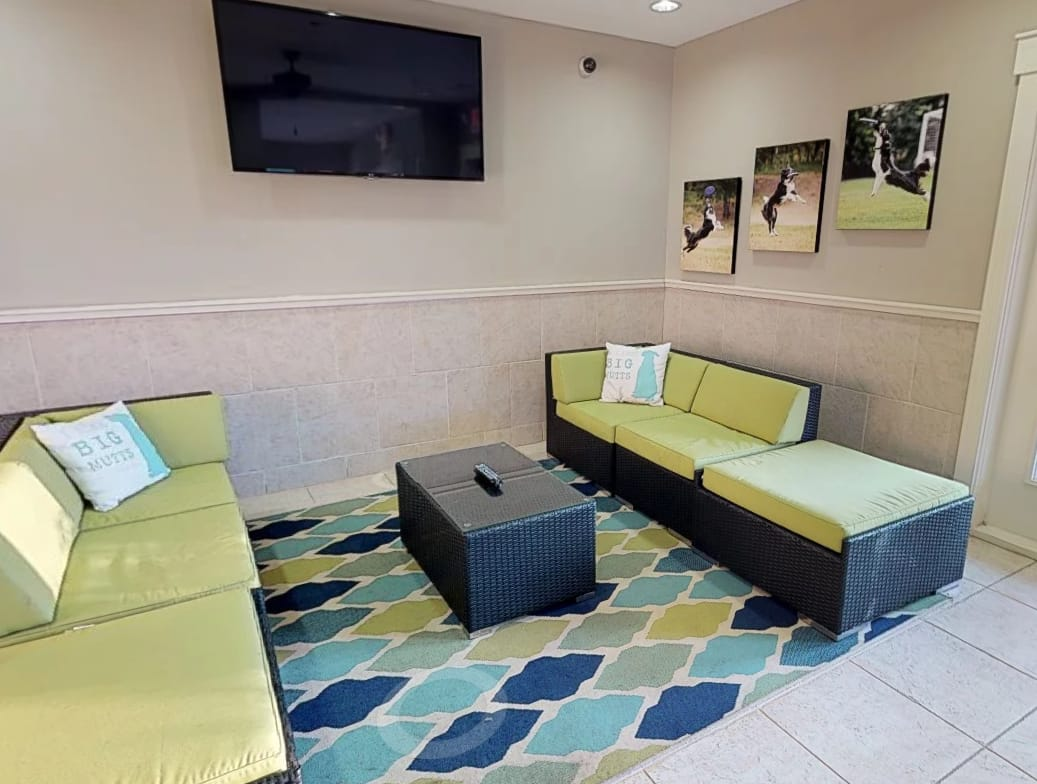 dog friendly apartments in cary