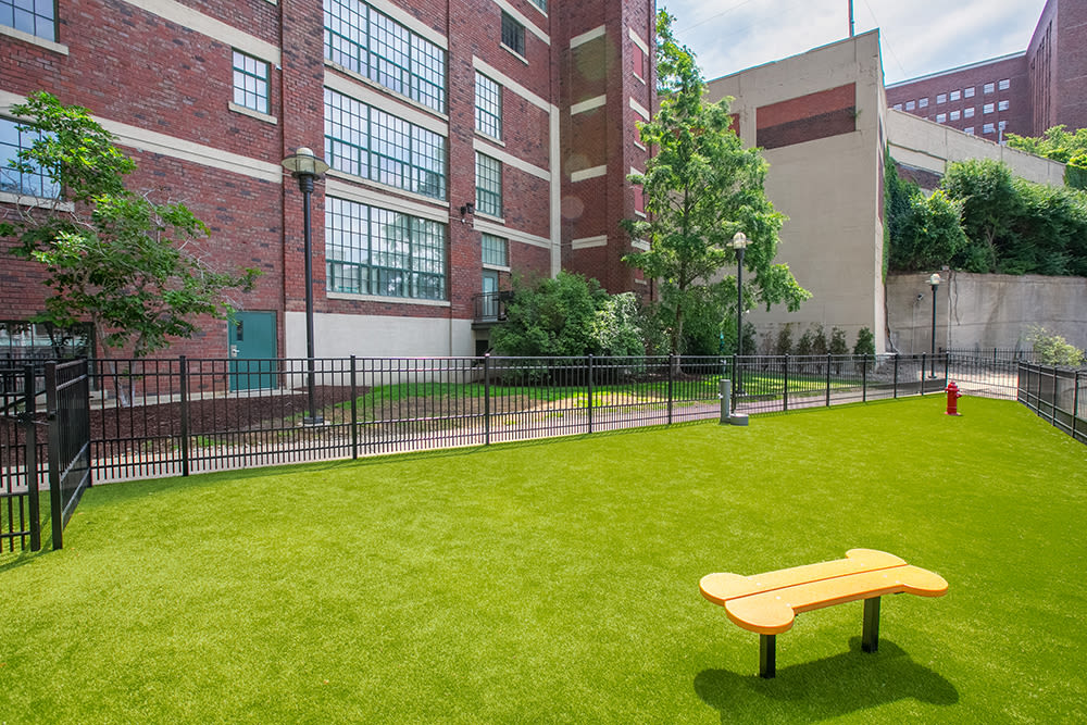 Our apartments in Cleveland, Ohio showcase a spacious dog park