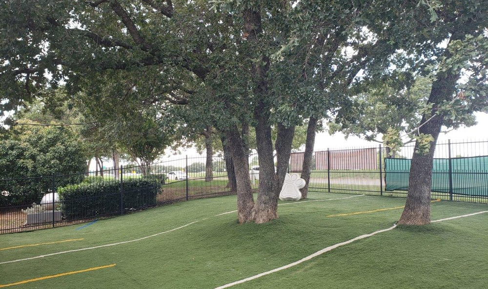 Outdoor dog run area at Creature Comfort Animal Clinic